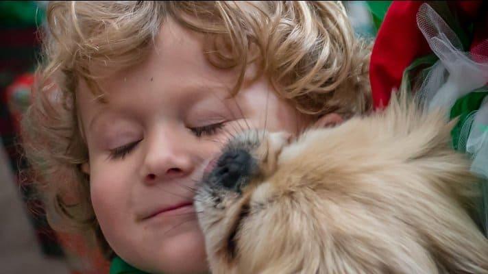 Tender Loving Kindness